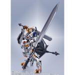 metal_robot_tamashii_4573102615015